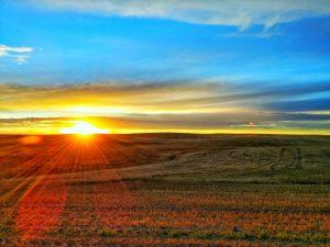 prairie-1542099_1280