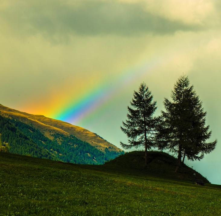 Peccato e Grazia: le ripartenze di Dio