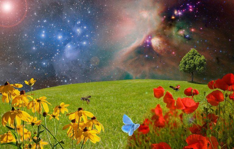 Salmo 19 la testimonianza della creazione
