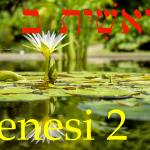 Genesi_2