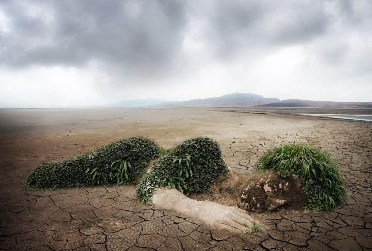 La sentenza sull'uomo e l'arida disarmonia del creato: Gen 3,17-19